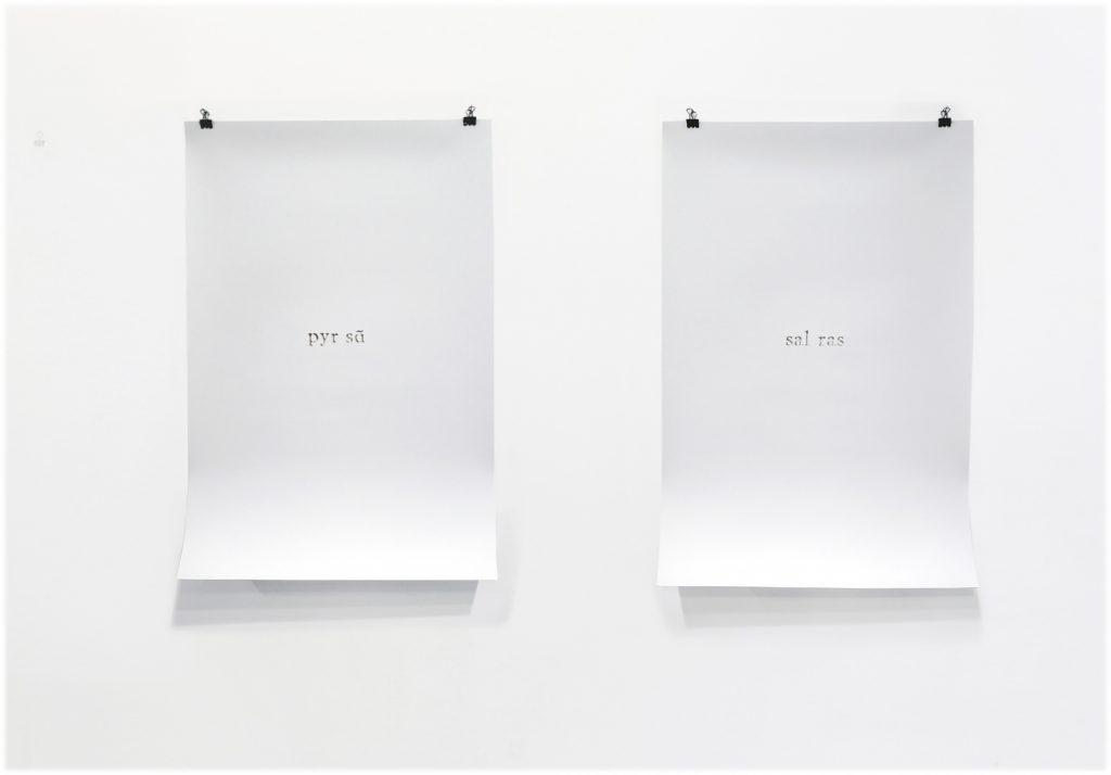 2011, paper silhouettes, 70 x 50 cm each