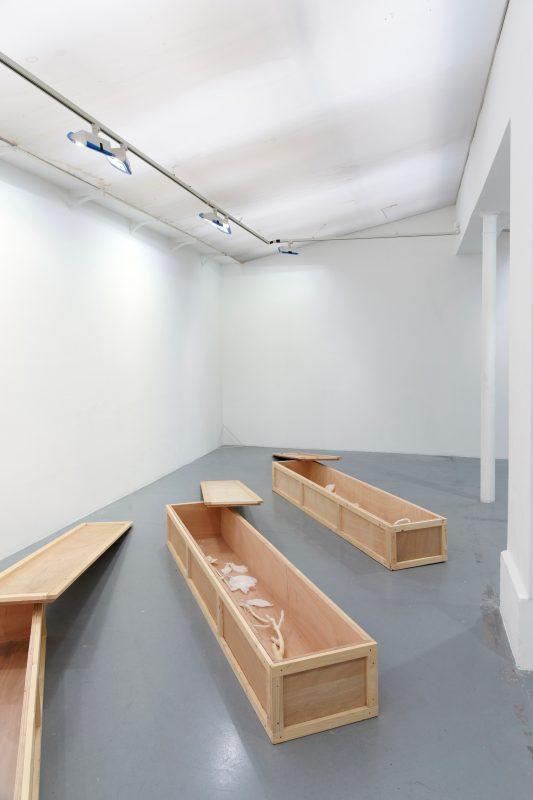 2011, wood, wax, 45 x 230 x 31 cm each box