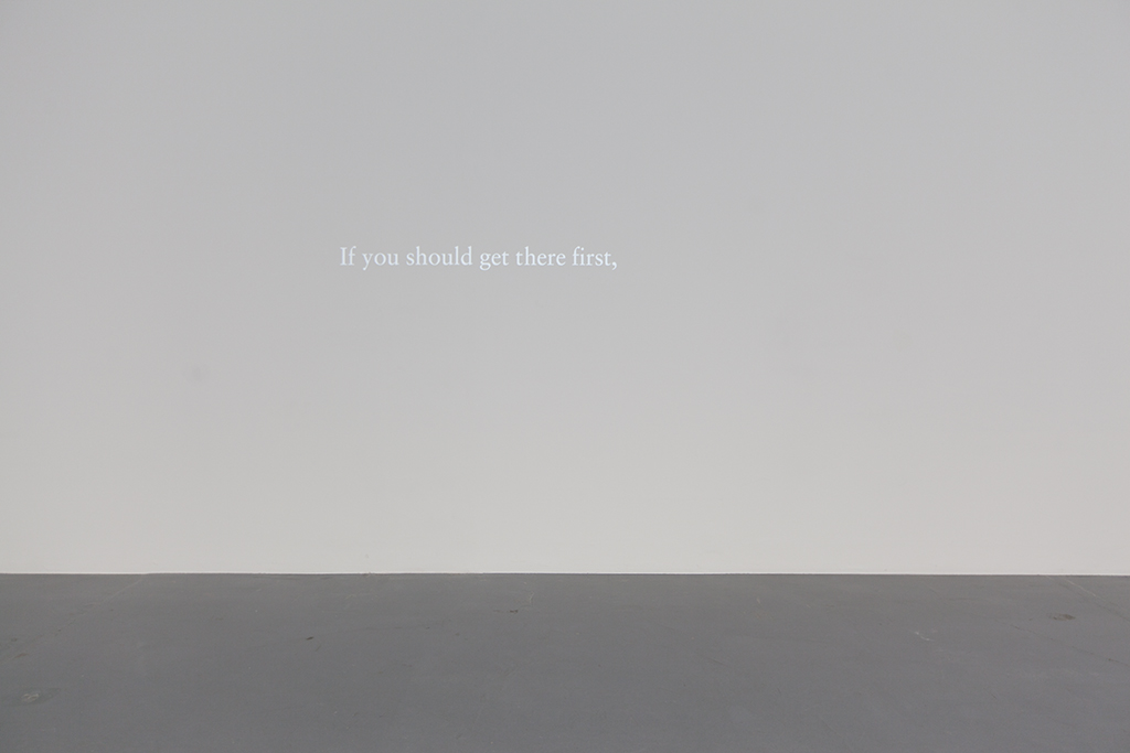 2015, animation, digital file, B&W, silent, loop, unique work