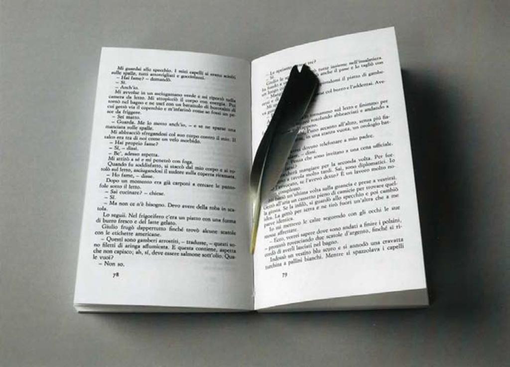 book, plume, 21 x 29,7 cm