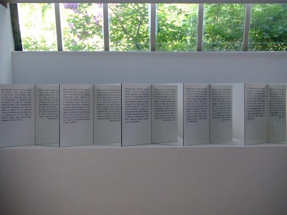 2007, inkjet on plexiglass, wood, mirror, 12 independent units, 48 x 46,5 x 25 cm each, unique works