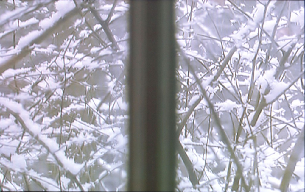 2002 – 2007, video, color, silent, 9mn 40s,
