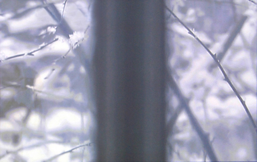2002 – 2007, video, color, silent, 9mn 40s