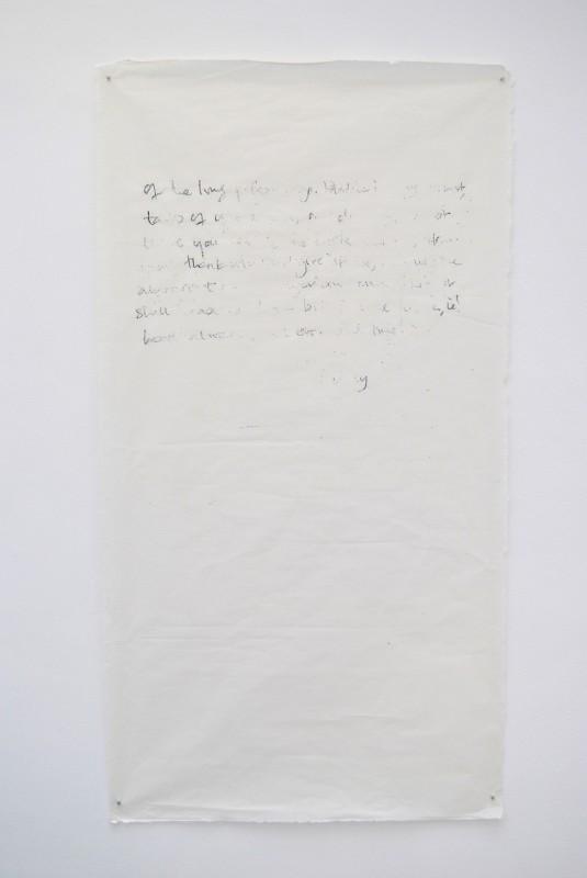 2014, ensemble de 5 dessins sur papier japon, 146 x 84 cm chacun, oeuvre unique <br> <br> Cette oeuvre utilise la correspondance entre Emily Dickinson et Susan Gilbert. La lettre utilisée est une copie fait main au crayon puis effacée au hasard. Le texte, enfin disparu, est agrandi afin de faire ressortir les détails de l'image et les marques du dessin. Enfin, l'image est retracée avec un feutre indélébile sur du papier japon pour reproduire l'effacement.