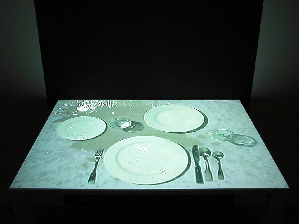 2009, installation, video, color, silent, 14mn, edition of 4