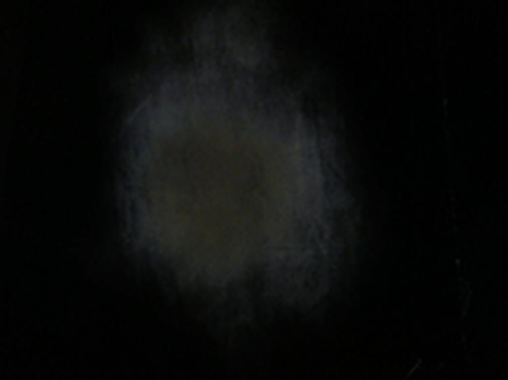 2011 Video HD, couleur, muet durée 5 minutes en boucle édition de 5 <br> Par intermittence, la buée d'un souffle vient se poser à la surface d'un écran plat. Filmée à travers un miroir sans tain, elle fait écho à l'expérience fondatrice de toute perception cinématographique où le spectateur, tel Gygès et son anneau, regarde un monde dont il est fondamentalement séparé. Signe d'une présence vivante à la surface de l'écran, le souffle emblématise la qualité de présence-absence qui caractérise toute image cinématographique.