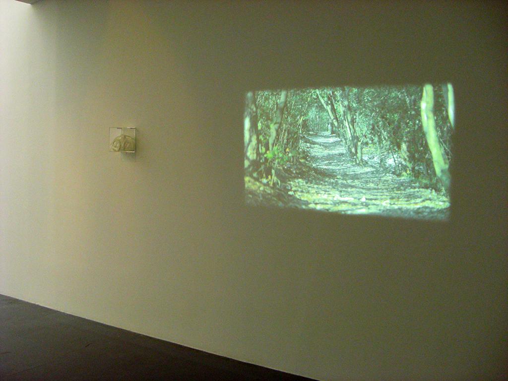 L.É.J. #1 (DUINO) 2013 vidéo HD couleur muette et texte imprimé 1h30' oeuvre unique
