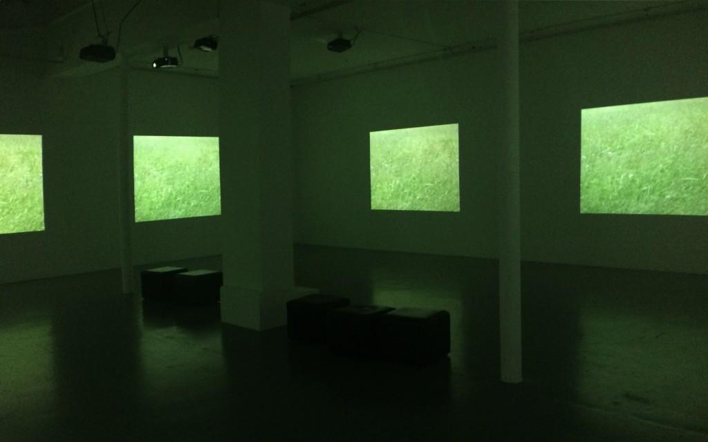 2002-2015, installation, vidéo couleur muette en 7 parties + vidéo couleur muette + oeuvre sonore, durée totale 50 mn 27, édition de 4