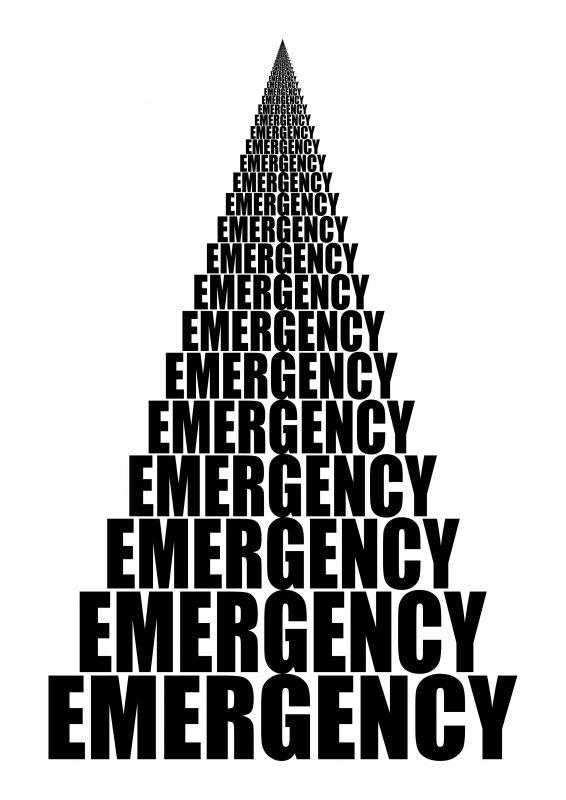 2017 édition papier et web  http://www.emergencyrevue.com/