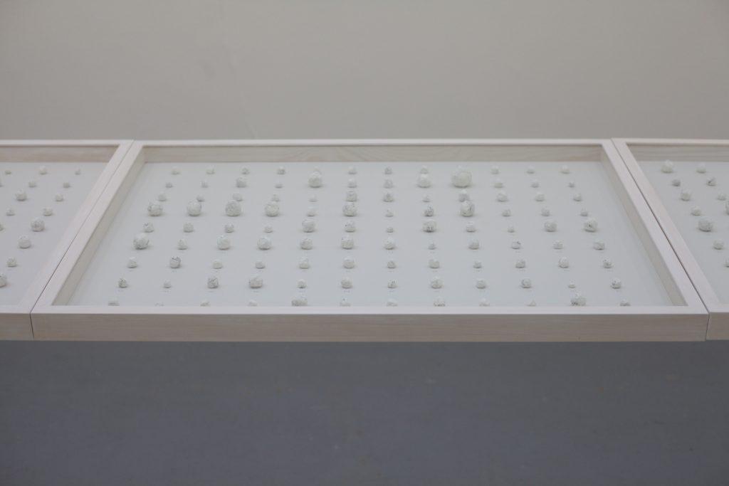 A CERTAIN WORD, 2018, Performance, Papier littéralement mâché, 525 entités sous vitrine, 63 x 415,5 x 5cm overall