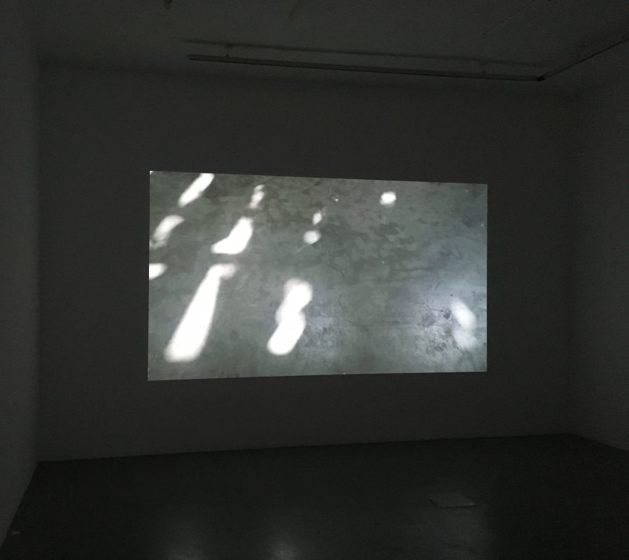 Abismo das superficies, Colour video, sound, 11'33», looped, edition of 5 (commissioned work for the 33rd São Paulo Biennial)