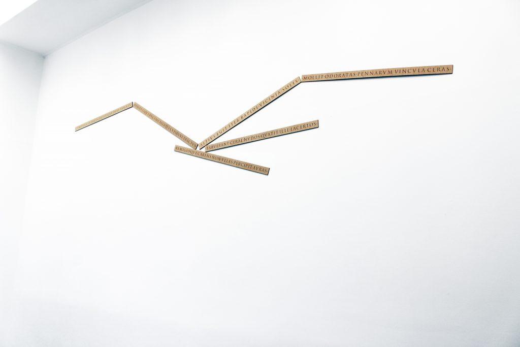 2019,  laser cut wood,  6 elements,  dimensions variable, unique work