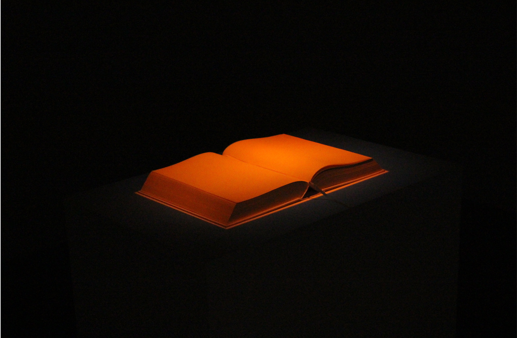 2019,  animation color, silent and white book, digital file, edition of 5
