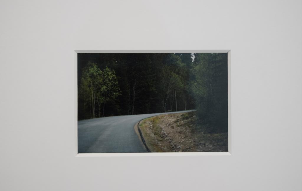 MOOSE (detail), 2017 color photo, framed 10,5 x 7cm edition #2/5 + AP